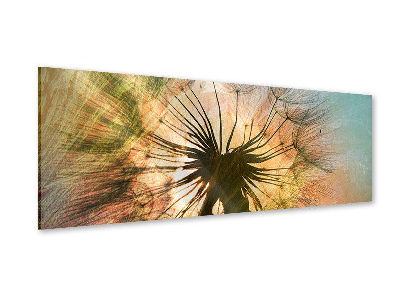 Acrylglasbild Panorama XXL Pusteblume