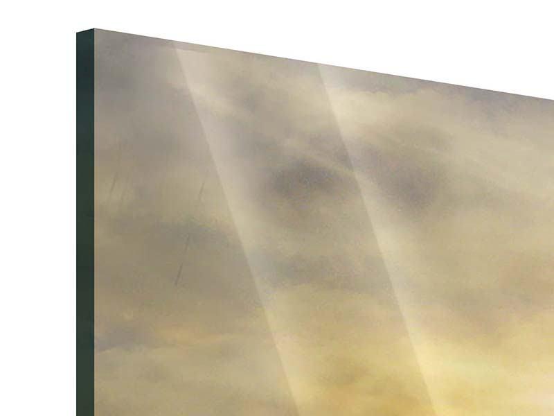 Acrylglasbild Panorama Wilde Pferde