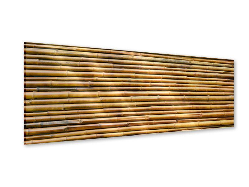 Acrylglasbild Panorama Bambus