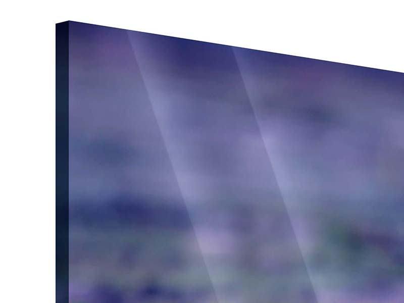 Acrylglasbild Panorama Lotus Duo im Sonnenaufgang