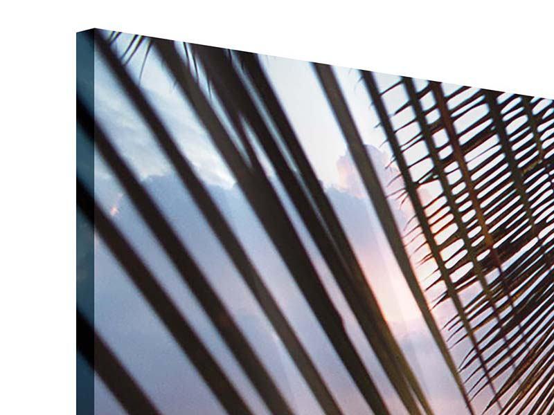 Acrylglasbild Panorama Unter Palmenblätter