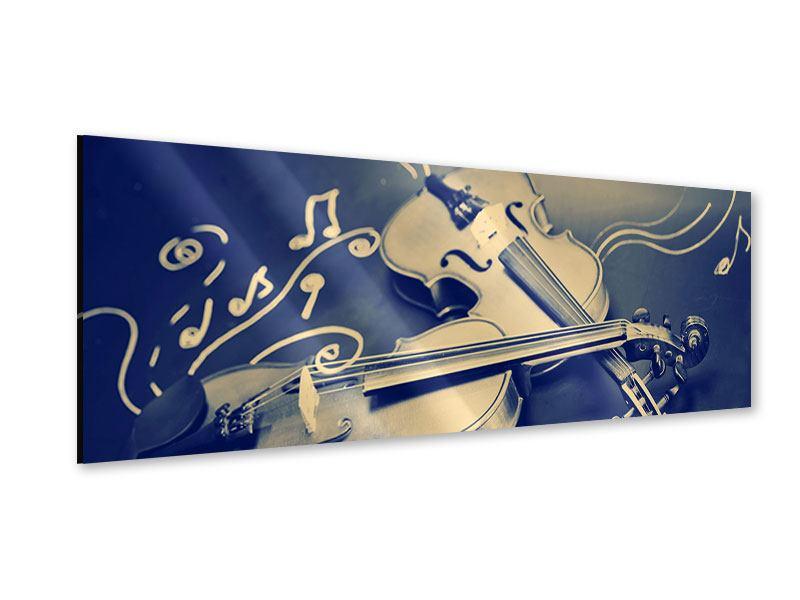 Acrylglasbild Panorama Geigen