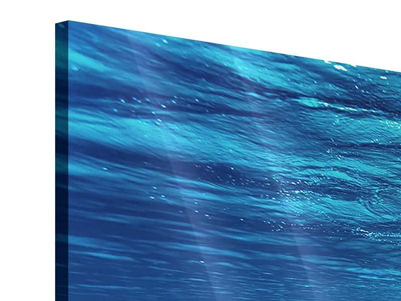 Acrylglasbild Panorama Schönheit unter Wasser