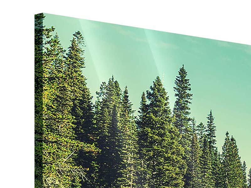 Acrylglasbild Panorama Die Musik der Stille in den Bergen