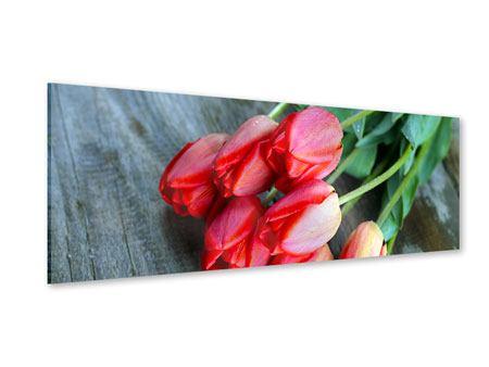 Acrylglasbild Panorama Der rote Tulpenstrauss