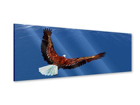 Acrylglasbild Panorama Der Adler