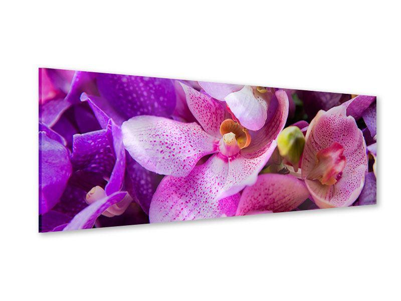 Acrylglasbild Panorama Im Orchideenparadies