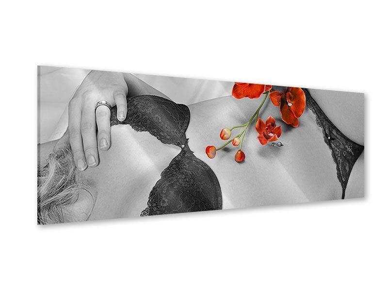 Acrylglasbild Panorama Dessous-Schönheit
