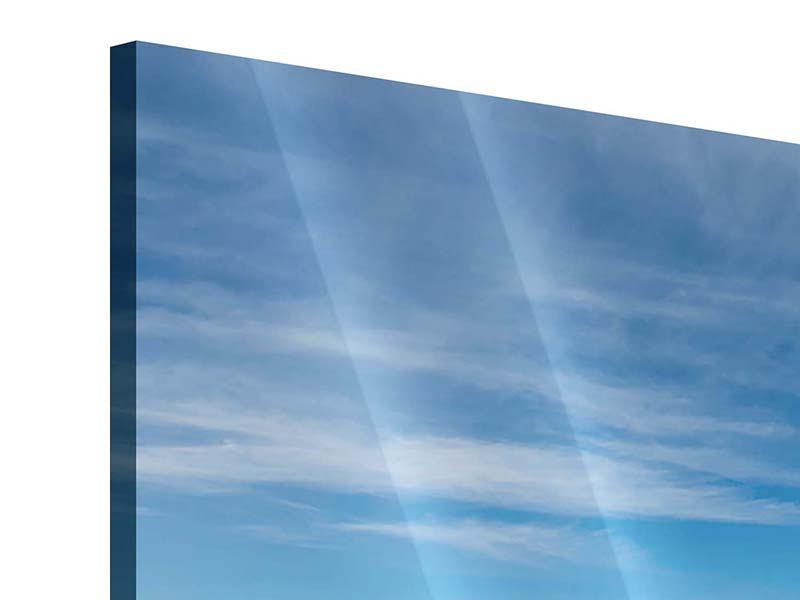 Acrylglasbild Panorama Warten auf die Arche Noah