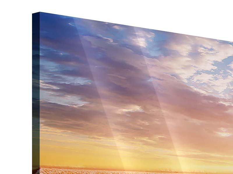 Acrylglasbild Panorama Sonnenaufgang bei den Tulpen