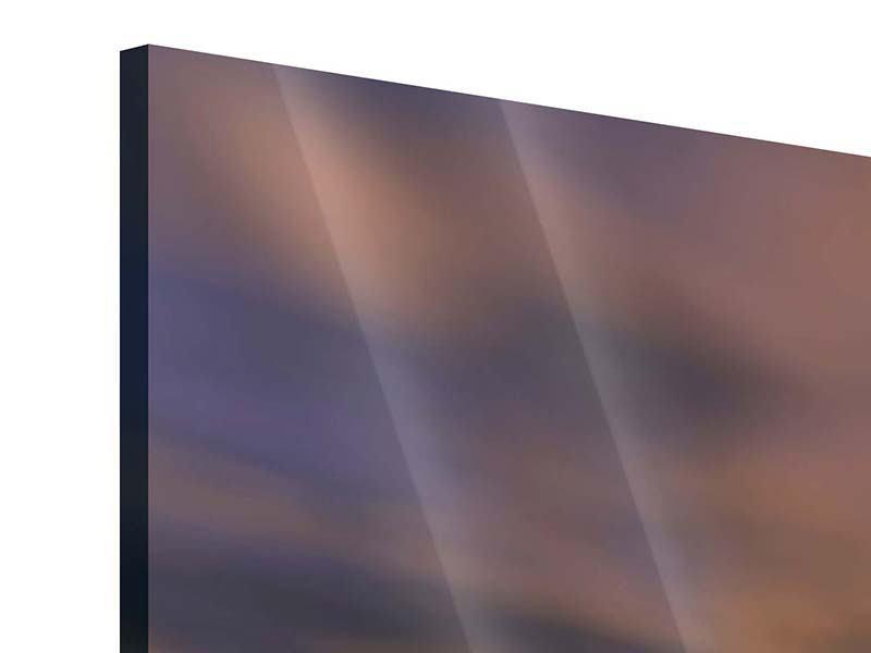 Acrylglasbild Panorama Wüstenelefanten