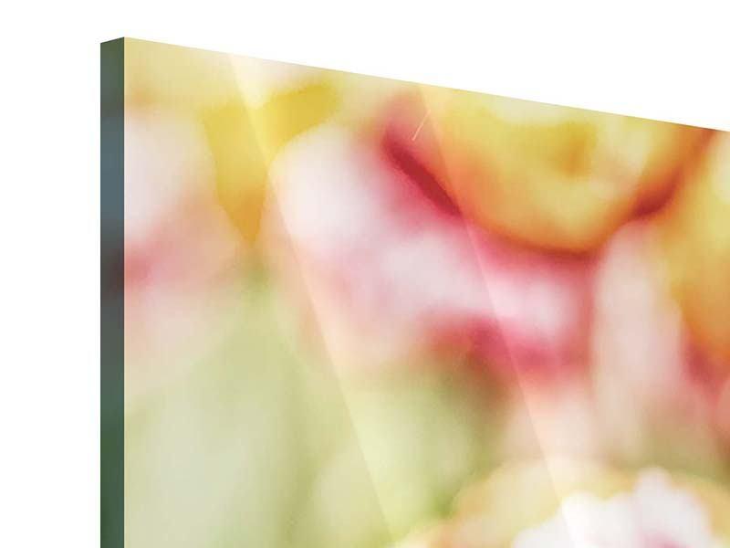 Acrylglasbild Panorama Die Schönheit der Tulpe