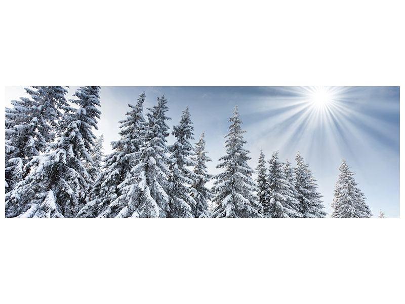 Acrylglasbild Panorama Wintertannen