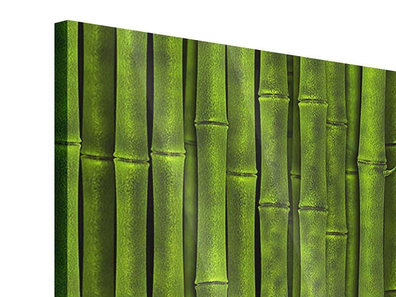 Acrylglasbild Panorama Wasserspiegelung Bambus