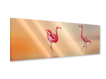Acrylglasbild Panorama Romantische Flamingos