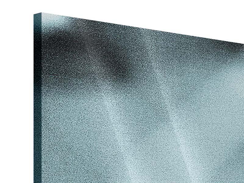 Acrylglasbild Panorama Boxer