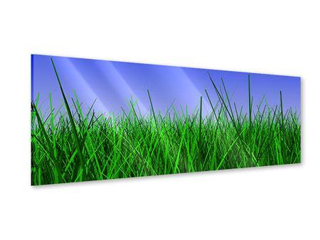Acrylglasbild Panorama Im Gras