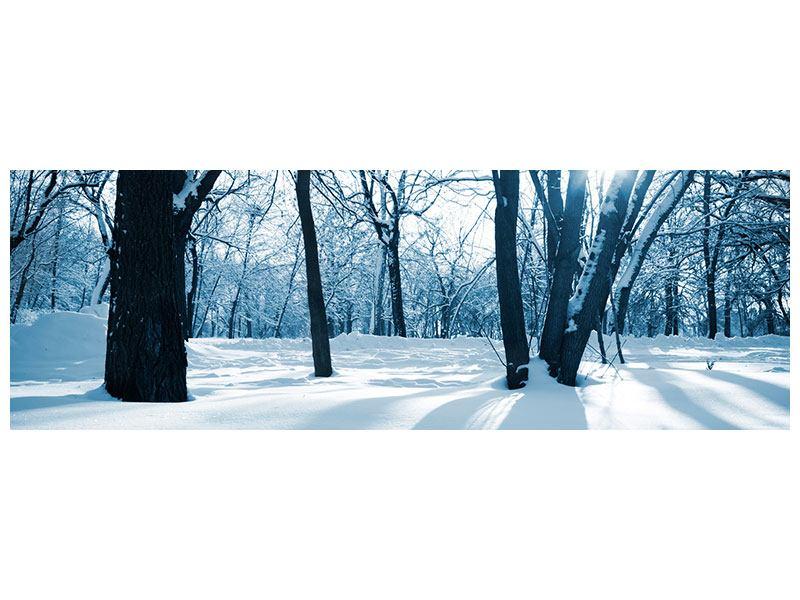 Acrylglasbild Panorama Der Wald ohne Spuren im Schnee
