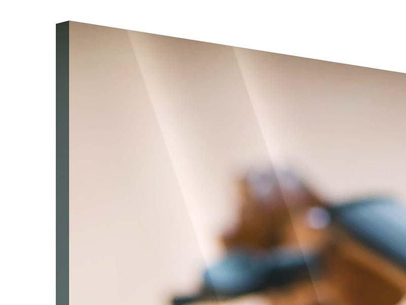 Acrylglasbild Panorama Geige