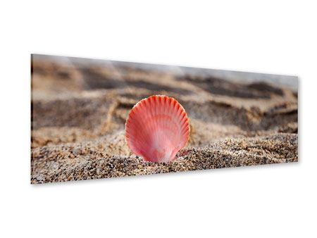 Acrylglasbild Panorama Die Muschel