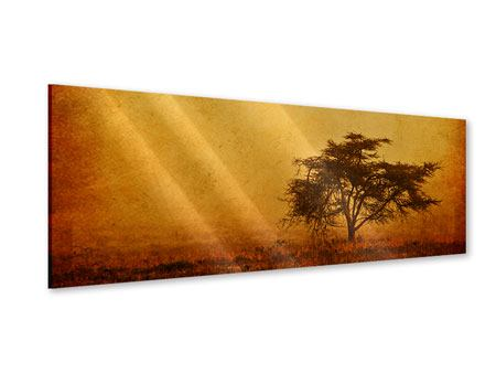 Acrylglasbild Panorama Sonnenuntergangsstimmung