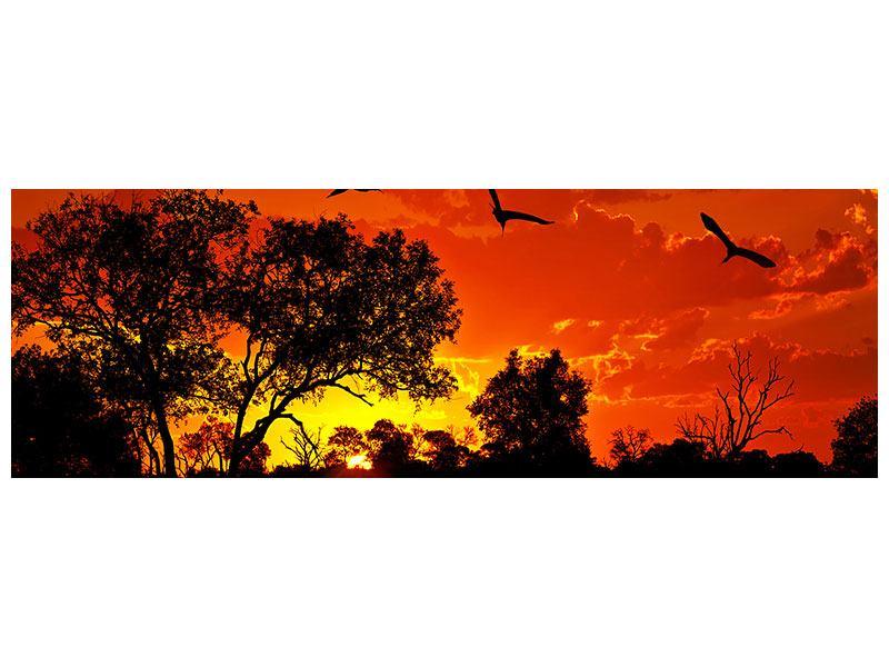 Acrylglasbild Panorama African Feeling