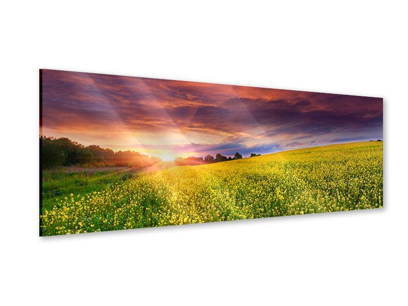 Acrylglasbild Panorama Abenddämmerung