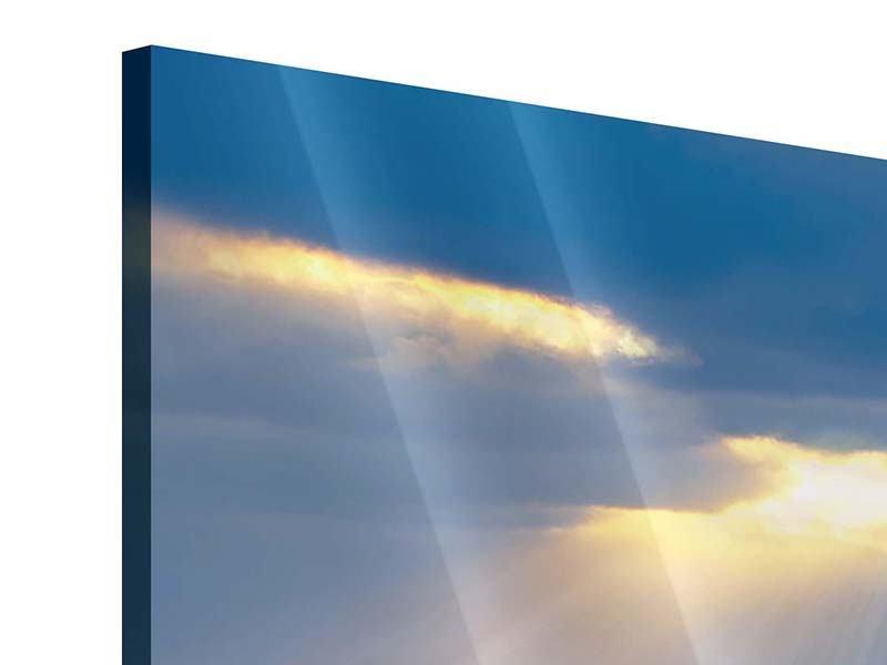 Acrylglasbild Panorama Der Lavendel und das Meer