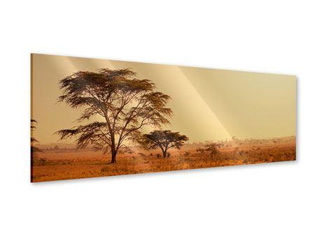 Acrylglasbild Panorama Weideland in Kenia