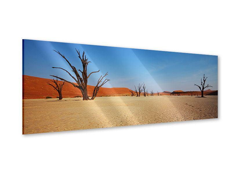 Acrylglasbild Panorama Wüste