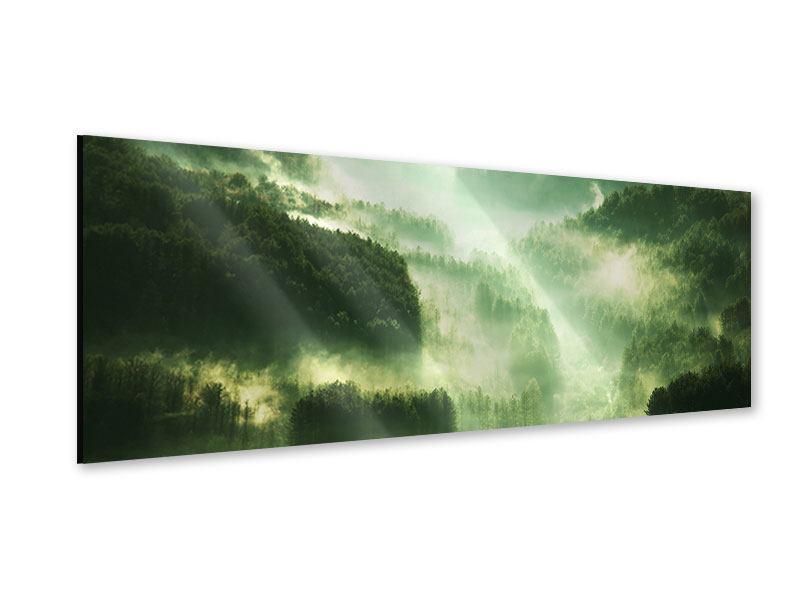 Acrylglasbild Panorama Über den Wäldern