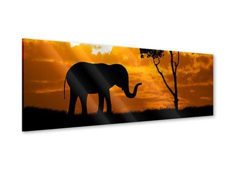 Acrylglasbild Panorama Verträumtes Afrika
