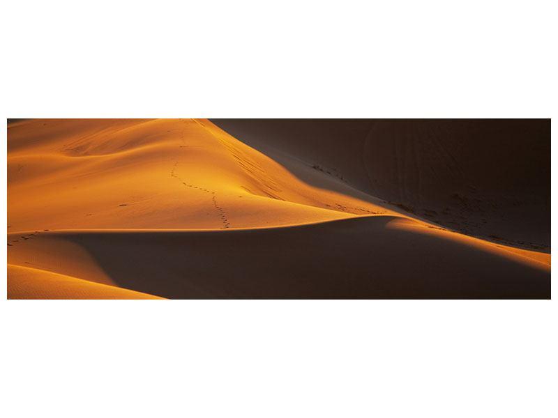 Acrylglasbild Panorama Wüstensand