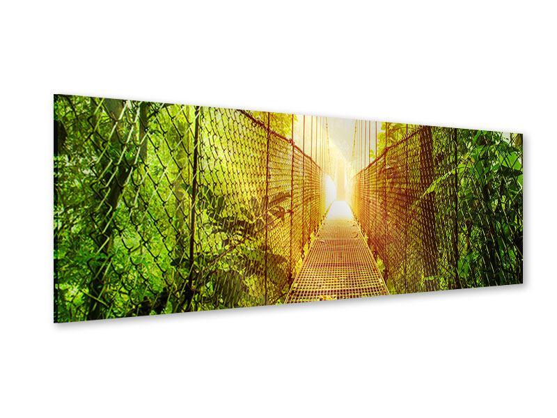 Acrylglasbild Panorama Hängebrücke
