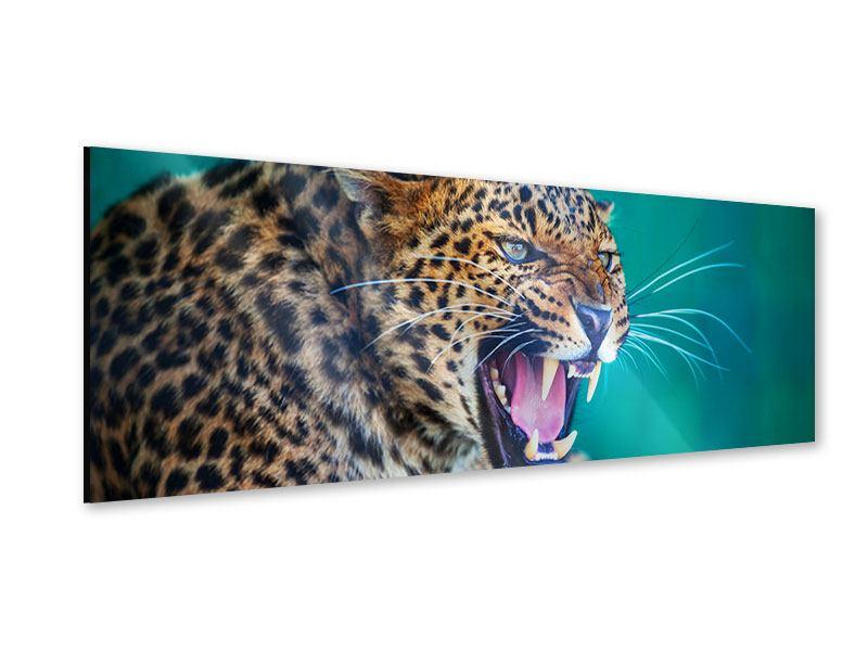 Acrylglasbild Panorama Achtung Leopard