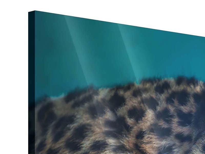 Acrylglasbild Panorama Leopard XL