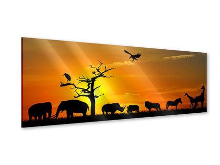 Acrylglasbild Panorama Safarietiere bei Sonnenuntergang