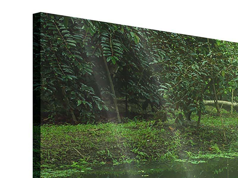 Acrylglasbild Panorama Gartenteich