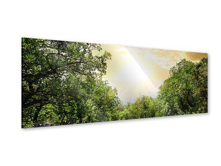 Acrylglasbild Panorama Am Ende des Waldes