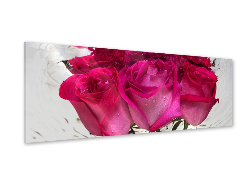 Acrylglasbild Panorama Die Rosenspiegelung