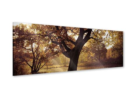 Acrylglasbild Panorama Landschaftspark