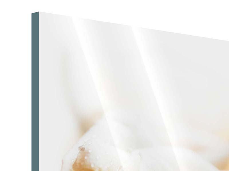 Acrylglasbild Panorama Rosenperspektive