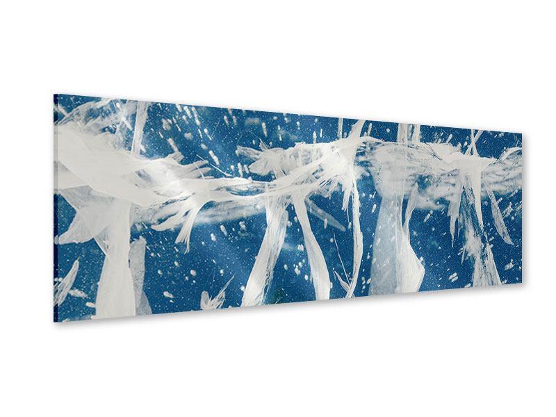 Acrylglasbild Panorama Eiskristalle