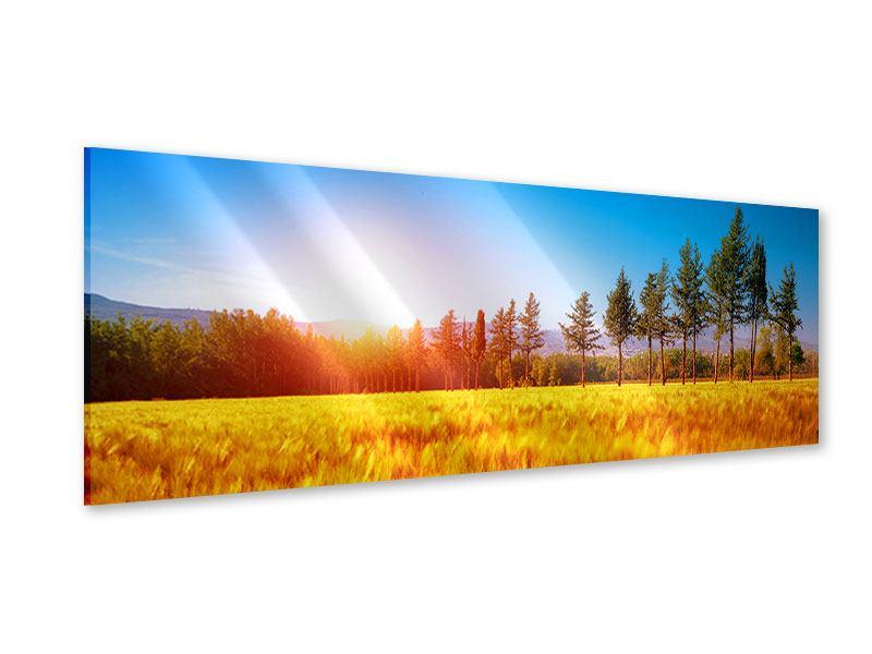 Acrylglasbild Panorama Der Herbst
