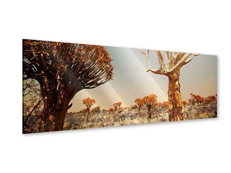 Acrylglasbild Panorama Afrikanische Landschaft