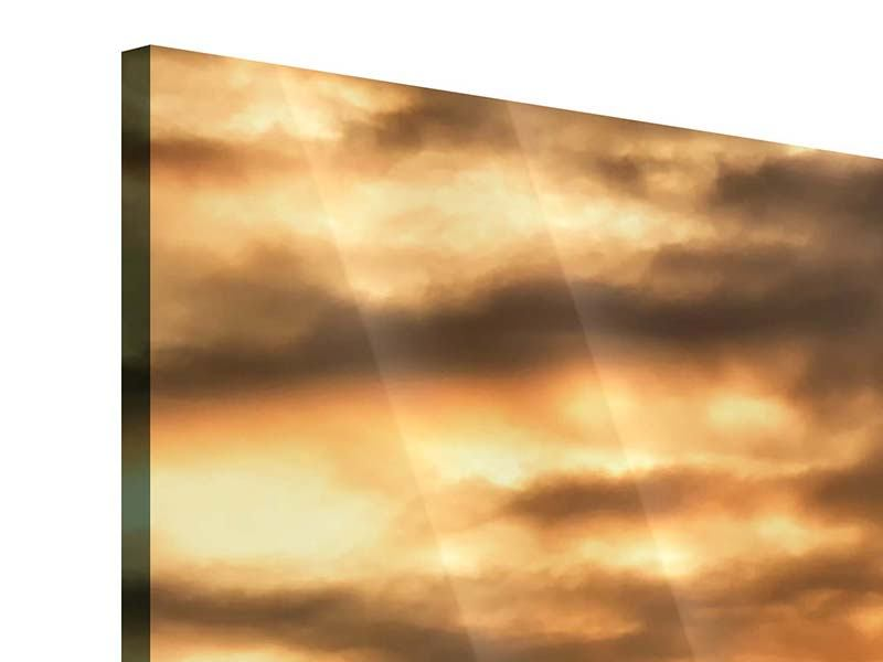 Acrylglasbild Panorama African Dreams