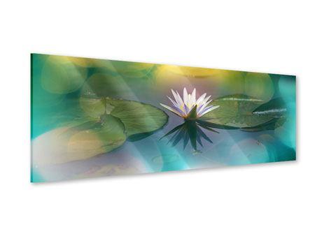 Acrylglasbild Panorama Lotus-Spiegelung