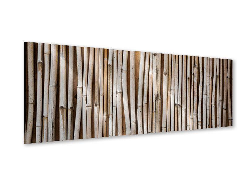 Acrylglasbild Panorama Getrocknete Bambusrohre