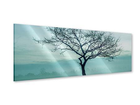 Acrylglasbild Panorama Der Zauberbaum