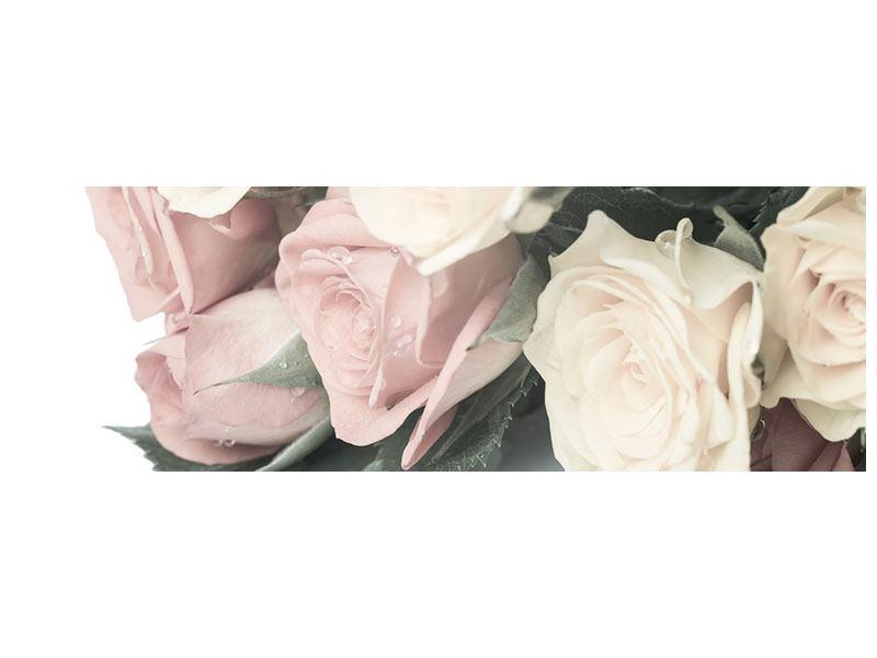 Acrylglasbild Panorama Rosenromantik